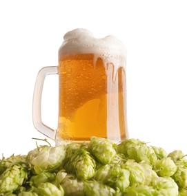 Consumul moderat de bere şi masa osoasă