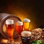 Evaluarea proprietăţilor nutriţionale, funcţionale şi sanitare ale berii